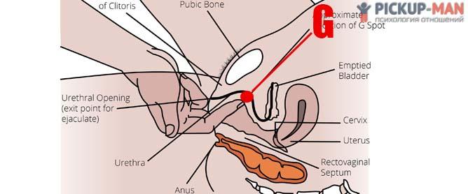 Как довести женщину до оргазма с помощью рук фото 743-937